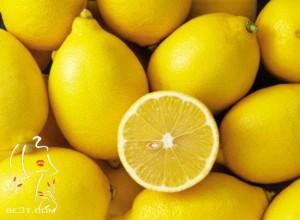 لوسیون لیمو و روغن زیتون مخصوص پوست بدن