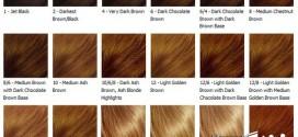 به روش حرفه ای ها موهایتان را رنگ کنید آموزش قدم به قدم