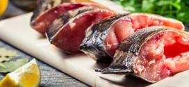 ماهی .تغذیه ای سالم ومتعادل