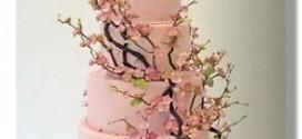 cake_13_m