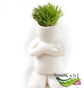 سبزه-عيد-13-285x300