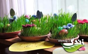 سبزه-عيد-14-300x185