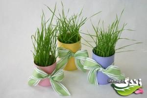 سبزه-عيد-16-300x200