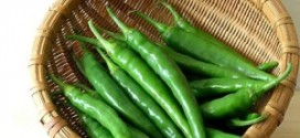 frozen-green-chillies-300x256