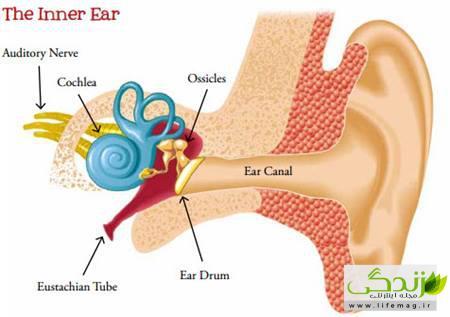 گرفتگی گوش چیست و چگونه می توان آن را درمان کرد؟